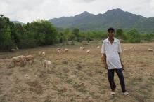 Farmer in Ninh Thuan